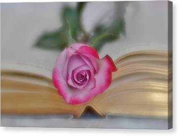 Canvas Print featuring the photograph Romantic Read 2 by Diane Alexander