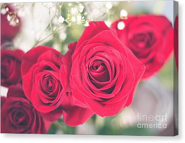 Romantic Red Roses Canvas Print by Cheryl Baxter