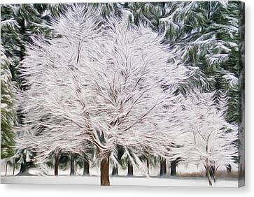 Romantic Skies Essence Of Winter Canvas Print