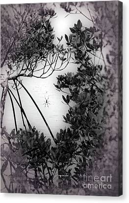 Canvas Print featuring the photograph Romantic Spider by Megan Dirsa-DuBois