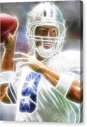 Romo Canvas Print by Paul Van Scott