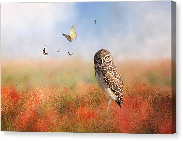 Romping In The Poppy Field Canvas Print by Kim Hojnacki