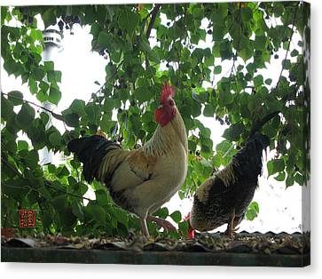 Rooftop Roosters Canvas Print