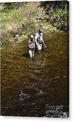 Brook Trout Image Canvas Print - Rookie's 1st  Brookie by Skip Willits