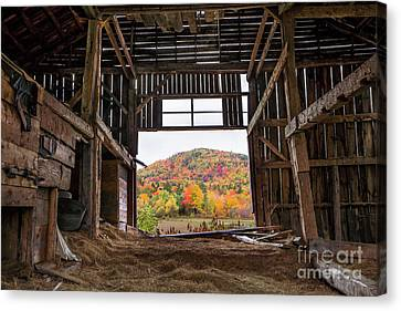 Maine Barns Canvas Print - Room With A View by Benjamin Williamson