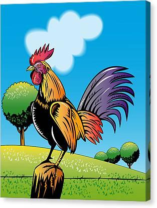Rooster Cockerel Cock Crowing Retro Canvas Print by Aloysius Patrimonio