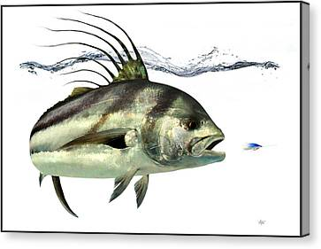 Rooster-fish Canvas Print by Anders Ovesen