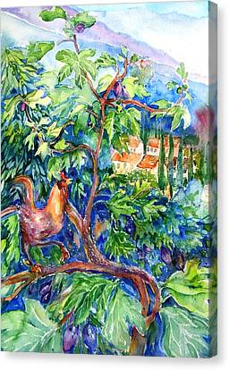 Rooster In A Fig Tree, Tuscany   Canvas Print by Trudi Doyle