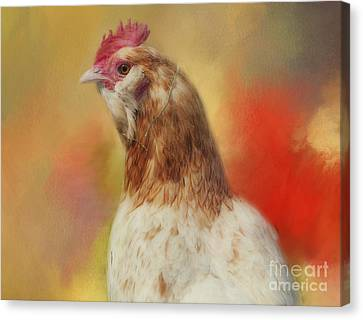 Kathy Rinker Canvas Print - Rooster by Kathleen Rinker