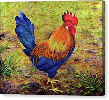 Rooster Canvas Print by Liza Gonen
