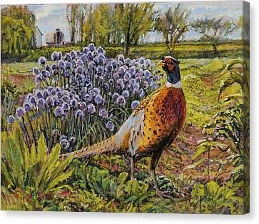 Canvas Print featuring the painting Rooster Pheasant In The Garden by Steve Spencer