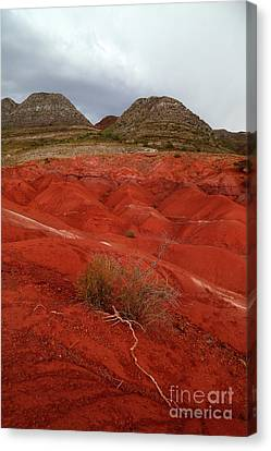 Grey Clouds Canvas Print - Roots And Desert Torotoro National Park Bolivia by James Brunker