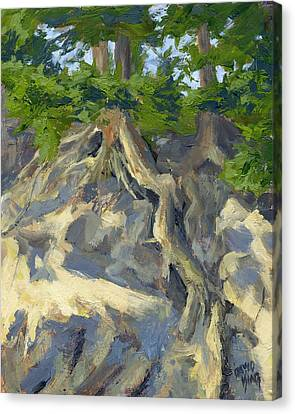 Roots And Rocks Canvas Print by David King