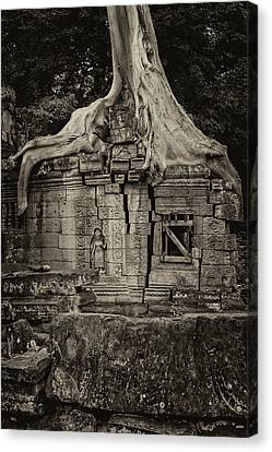 Canvas Print featuring the photograph Roots In Ruins 5, Ta Prohm, 2014 by Hitendra SINKAR