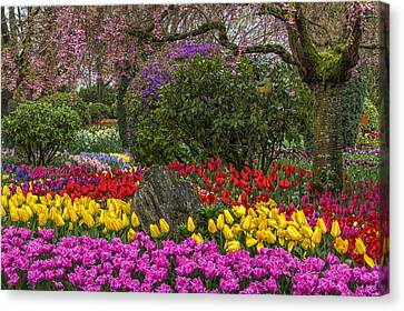 Roozengaarde Flower Garden Canvas Print by Mark Kiver