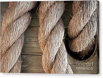 Rope In A Hole Canvas Print by Dan Holm