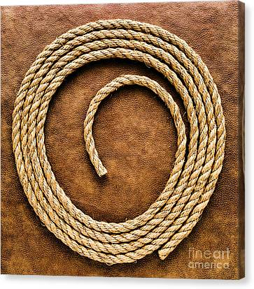 Fiber Canvas Print - Rope On Leather by Olivier Le Queinec