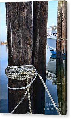 Ropes And Pilings Canvas Print by Paul Ward