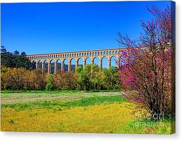 Roquefavour Aqueduct Canvas Print by Olivier Le Queinec