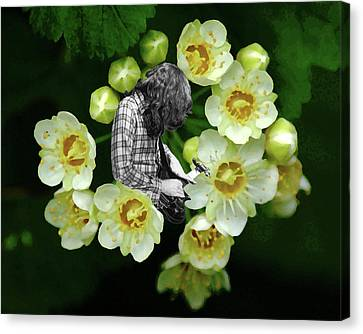 Canvas Print featuring the photograph Rory Flower by Ben Upham