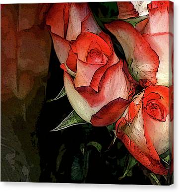 Rose 5 Canvas Print