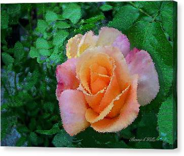 Canvas Print featuring the photograph Rose by Bonnie Willis