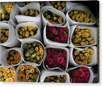 Rose Bunches Canvas Print by Mohammed Nasir