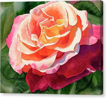 Rose Fringed With Red Petals Canvas Print by Sharon Freeman