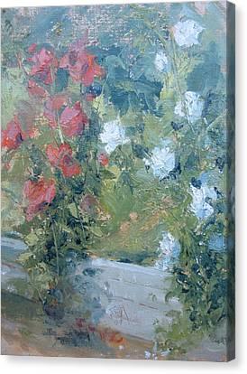 Rose Garden Canvas Print by Bryan Alexander