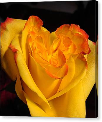 Canvas Print featuring the photograph Rose Heart by Margaret Bobb