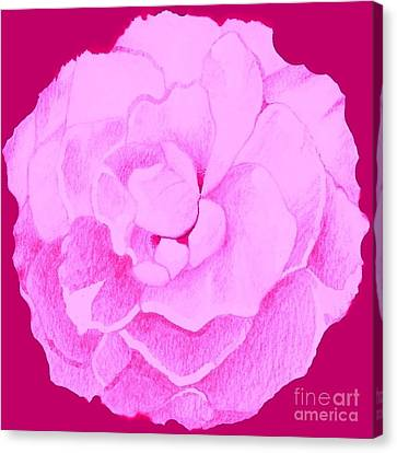 Rose In Hot Pink Canvas Print
