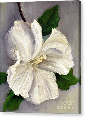 Rose Of Sharon Diana Canvas Print by Randy Burns