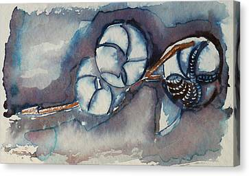 Rose Of Sharon Seed Pods Canvas Print by Diana Davenport