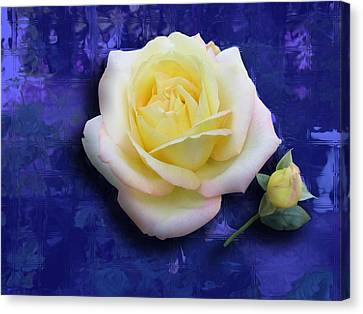 Rose On Blue Canvas Print by Morgan Rex