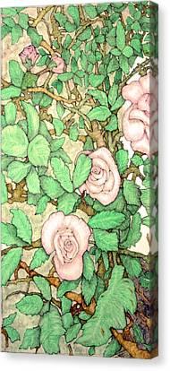 Rose Panel No 1 Canvas Print by Edward Ruth