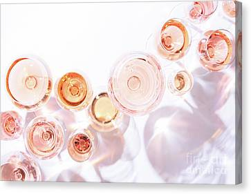 Rose Shades Canvas Print by Ekaterina Molchanova