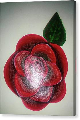 Rose Canvas Print by Shweta Singh