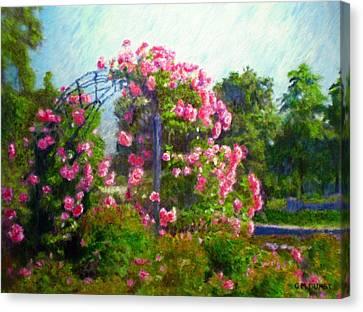 Rose Trellis Canvas Print by Michael Durst
