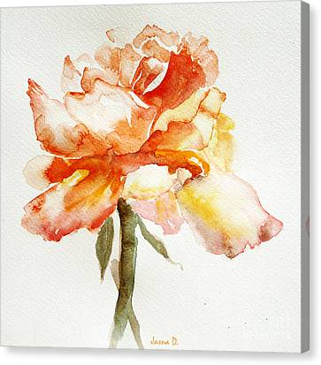 Rose Yellow Canvas Print by Jasna Dragun