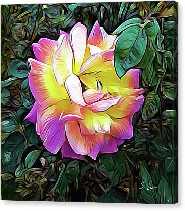 Rose_2205 Canvas Prints, Framed Prints, Acrylic Prints, Metal Prints, Wood Prints Canvas Print by S Art