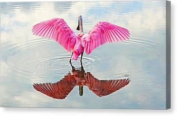 Roseate Spoonbill Pink Angel Canvas Print