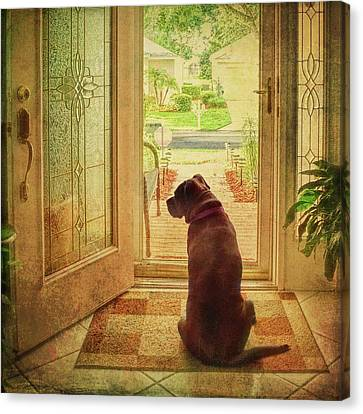 Canvas Print featuring the photograph Rosebud At The Door by Lewis Mann