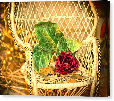 Roses' Chair Canvas Print by Camille Lopez