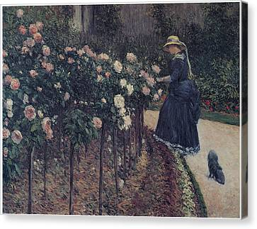 Gennevilliers Canvas Print - Roses Garden At Petit Gennevilliers by Gustave Caillebotte