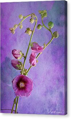Roses  Canvas Print by Karo Evans