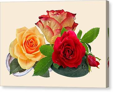 Roses Canvas Print by Manfred Lutzius