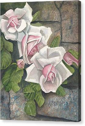 Roses On A Stonewall  Canvas Print