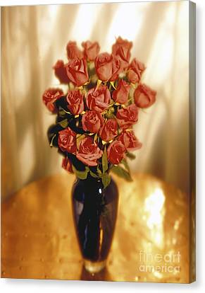 Roses Canvas Print by Tony Cordoza