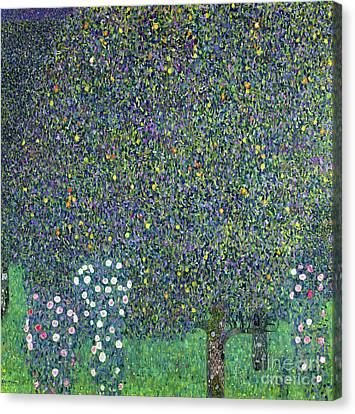 1918 Canvas Print - Roses Under The Trees by Gustav Klimt