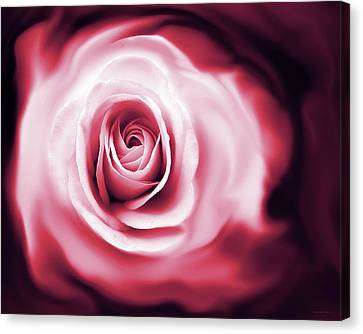 Rose's Whispers Magenta  Canvas Print by Jennie Marie Schell